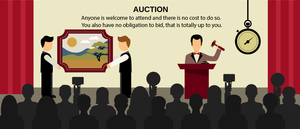 Seized Sales Auctions Explainer Info Graphic Auction